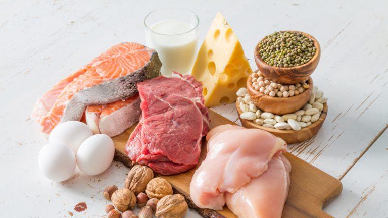Regime proteique lev diet