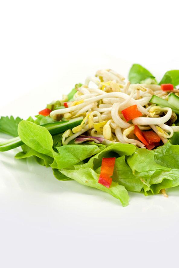 Recette Lev Diet Salade de Pousses de Soja