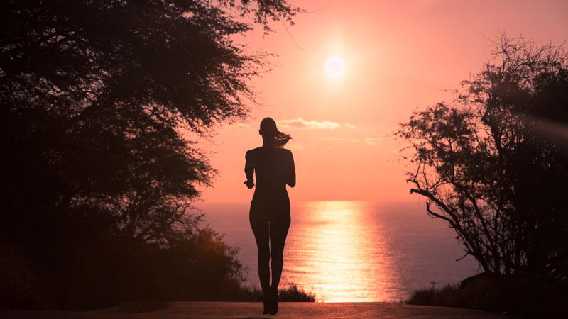 Les Meilleurs Exercices Cardio en 30 minutes