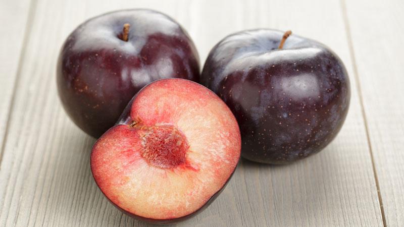 Profitez des prunes, des fruits de septembre